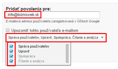 Google Analytics pristup